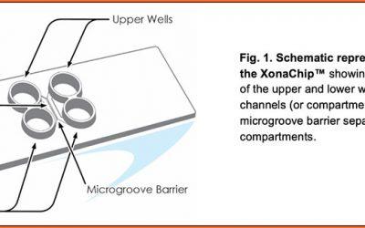 Introducing XonaChips®