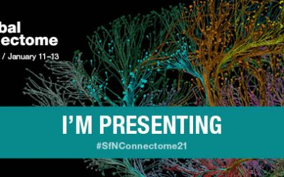 Xona scientists present posters at SfN Global Connectome: A Virtual Event on Jan. 11